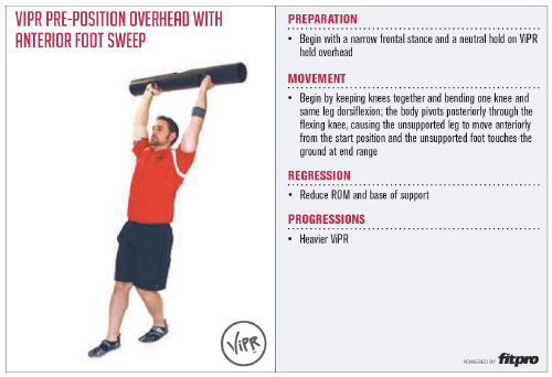 Superficial Front Line ViPR Exercise 2