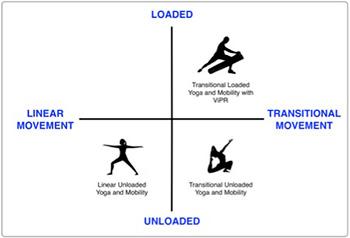 ViPR Diagram