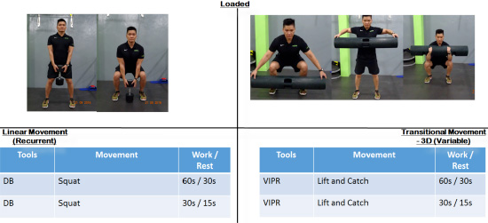ViPR cycle exercises 2